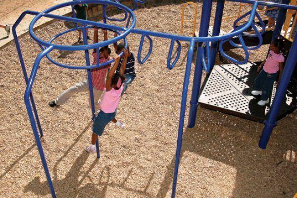360° Overhead Ladder (200114399)