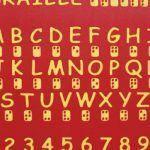 Braille Panel (200202281)