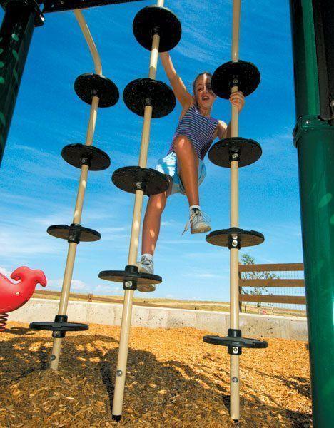 Pommel Climber (200007003)