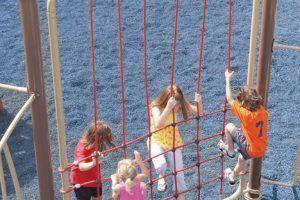 Straight Rope Climbing Wall (200202248)
