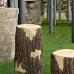 Tree Stumps Birch - Medium (200202721)