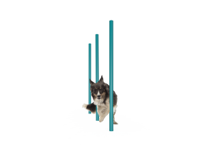 Dog Agility Weave Poles (LTDP06)