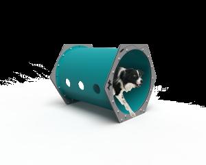 Dog Crawl Tunnel (LTDP09)