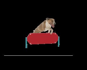 Dog Hexagon Hurdle (LTDP04)