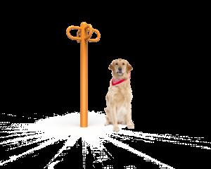 Dog Leash Rack (LTDP12)