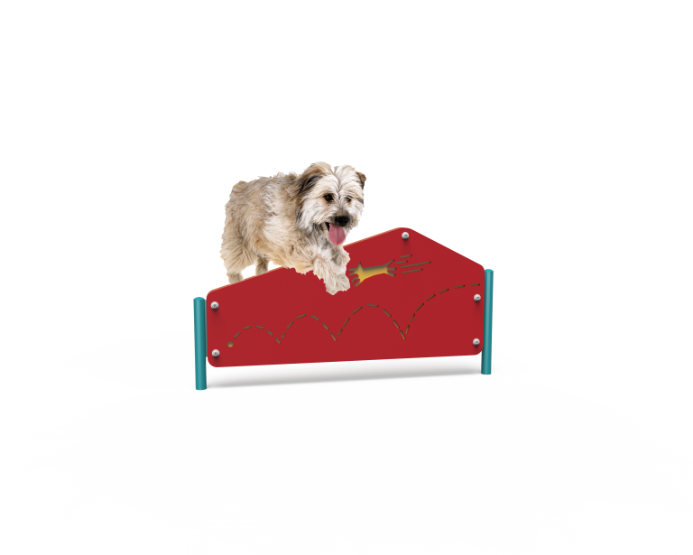 Dog Pentagon Hurdle (LTDP05)