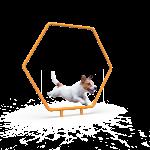 Dog Single Hoop (LTDP10)