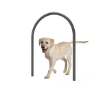 Dog Small Loop (LTDP01)