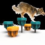 Dog Steppers (LTDP07)