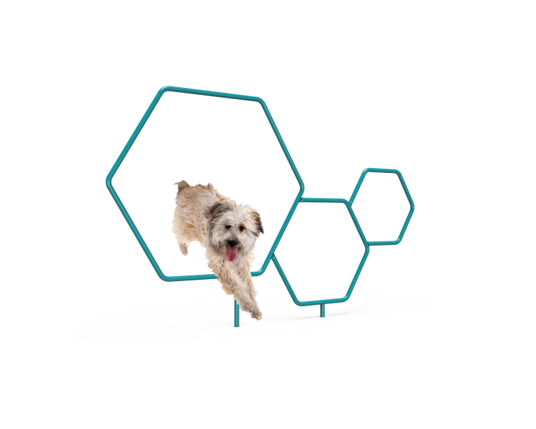 Dog Triple Hoops (LTDP11)
