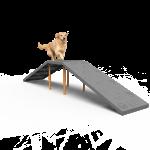 Dog Walk Ramp (LTDP08)