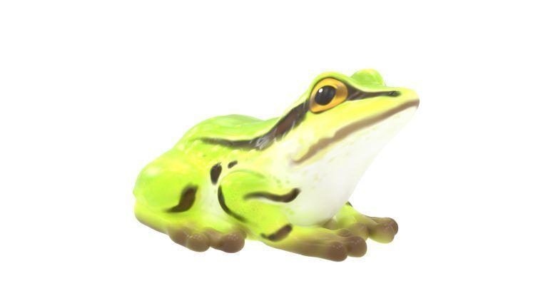 Frog Climber (LTTP2021M)