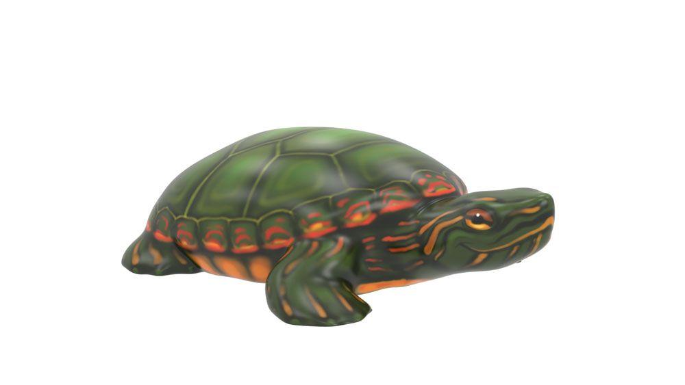 Tucson Turtle Climber (LTTP2020M)